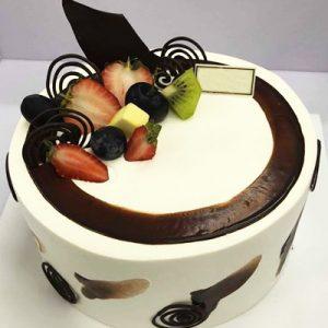 special cake 24