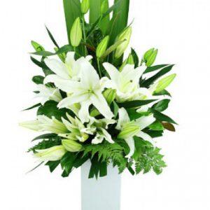 Sympathy Vase vietnam 07