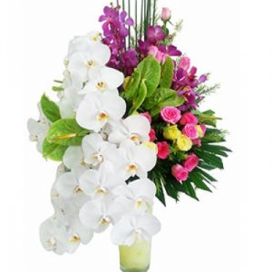 Sympathy Vase vietnam 08