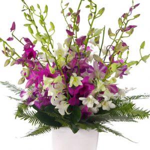 Sympathy Vase vietnam 17