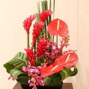 Office Flowers Vietnam 12
