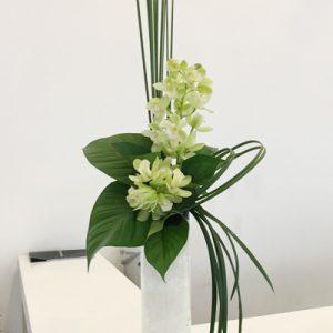 Office Flowers Vietnam 16