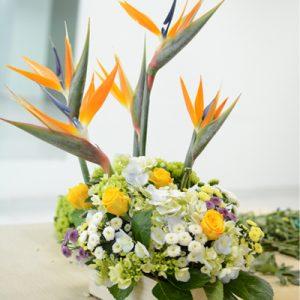 Office Flowers Vietnam 19