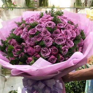 Purple Lilac Love