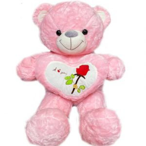 pink-teddy-bear-heart-01