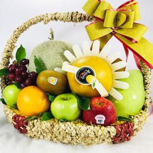 christmas-fruits-17