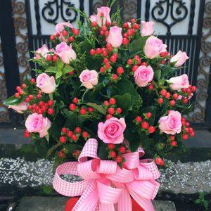Christmas Roses 22