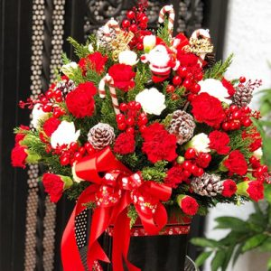 Special Christmas Flowers 02