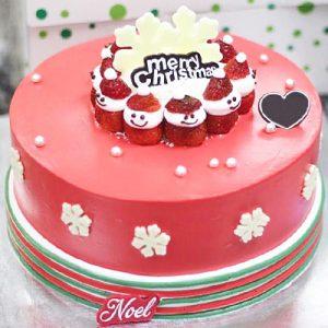 xmas-cake-17