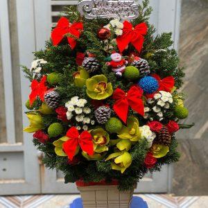 christmas-roses-32