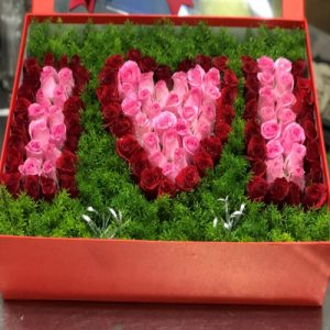 special-christmas-flowers-21