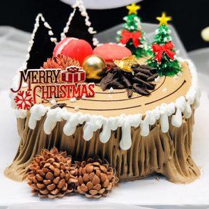xmas-cake-04