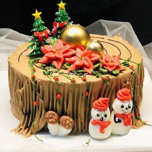 xmas-cake-16