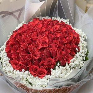 christmas-flowers-vietnam-18