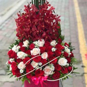 christmas-flowers-vietnam-70