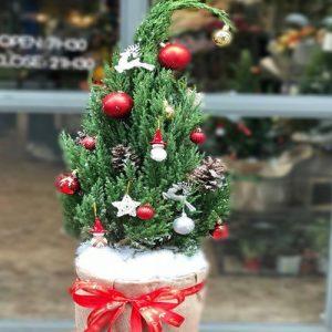 christmas-tree-16