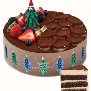 xmas-tous-les-jours-cake-08