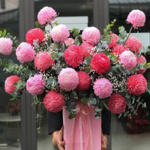 peony-chrys-flowers-01